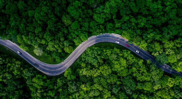 This is the feature image of the blog post 5 Reasons to Use Anionic Bitumen Emulsions Over Cationic Emulsions. The picture shows an aeral shot of a curvy asphalt road. This highway is opening way within a thick green forest. Anonic emulsions are recomended for use in remote places like this to maintain the road surface area.